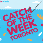 Best Weekly Grocery Flyer Specials in Toronto from SaleWhale