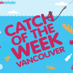 Best Weekly Grocery Flyer Specials in Vancouver from SaleWhale