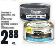 Clover Leaf Or Ocean's White Tuna