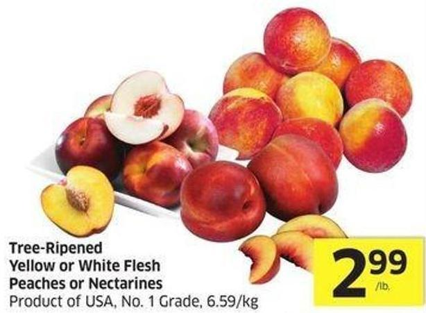 Tree-ripened Yellow or White Flesh Peaches or Nectarines Product of USA - No. 1 Grade - 6.59/kg