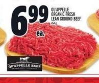 Qu'appelle Organic Fresh Lean Ground Beef