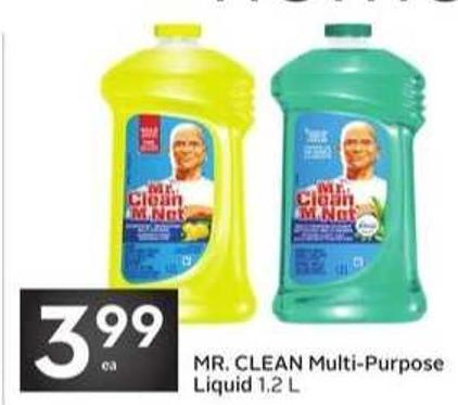 Mr. Clean Multi-purpose Liquid