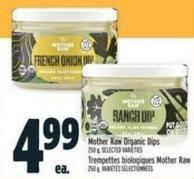 Mother Raw Organic Dips
