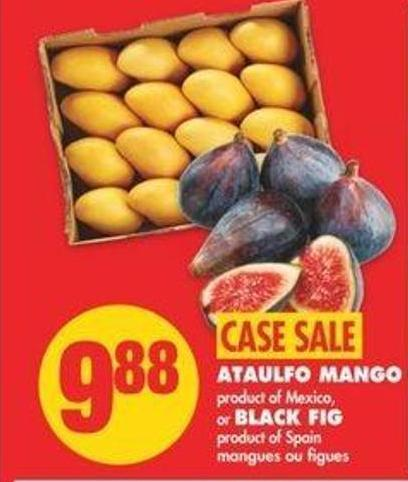 Ataulfo Mango - Black Fig