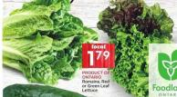 Romaine - Red or Green Leaf Lettuce