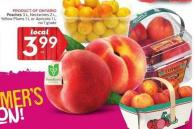 Peaches 3 L - Nectarines 2 L - Yellow Plums 1 L or Apricots 1 L No 1 Grade