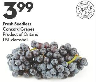 Fresh Seedless Concord Grapes