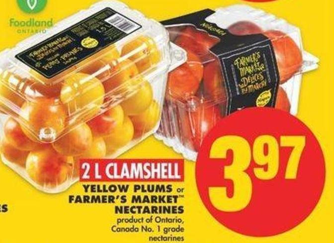 Yellow Plums Or Farmer's Market Nectarines - 2 L Clamshell