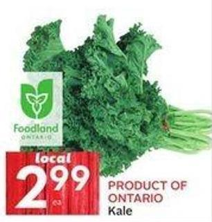 Product Of Ontario Kale