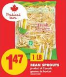 Bean Sprouts - 1 Lb