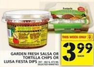 Garden Fresh Salsa Or Tortilla Chips Or Luisa Fiesta Dips
