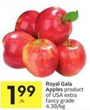 Royal Gala Apples Product of USA Extra Fancy Grade 4.39/kg