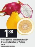 White Pomelo Or Dragonfruit