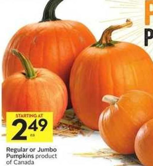 Regular or Jumbo Pumpkins Product of Canada