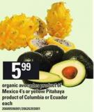 Organic Avocados - 4's Or Yellow Pitahaya - Each