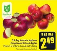 3 Lb Bag Ambrosia Apples or Compliments Mcintosh Apples Product of Ontario - Canada Extra Fancy