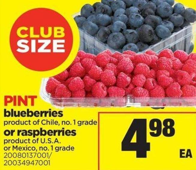 Blueberries Or Raspberries