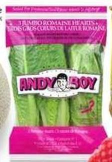 Andy Boy Romaine Hearts