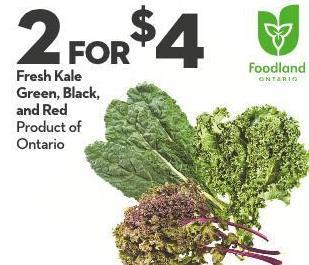 Fresh Kale Green - Black - and Red