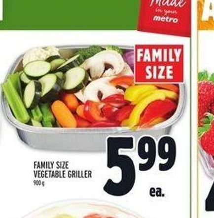 Family Size Vegetable Griller