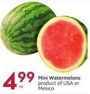 Mini Watermelons