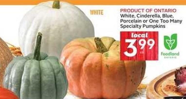 White - Cinderella - Blue - Porcelain or One Too Many Specialty Pumpkins