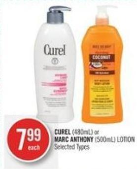 Curel (480ml) or Marc Anthony (500ml) Lotion