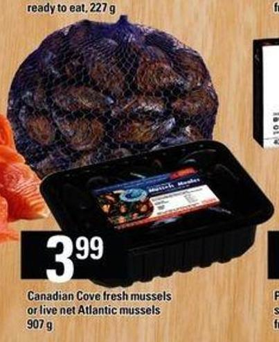 how to cook canadian cove mussels