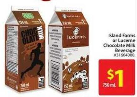 Island Farms or Lucerne Chocolate Milk Beverage