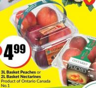 3l Basket Peaches or 2l Basket Nectarines Product of Ontario Canada No.1