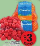 Raspberries Or Clementines