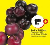 Black or Red Plums Product of USA No. 1 Grade 3.73/kg