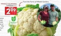 Cauliflower No 1