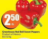 Greenhouse Red Bell Sweet Peppers