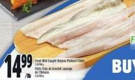 Fresh Wild Caught Ontario Pickerel Fillets