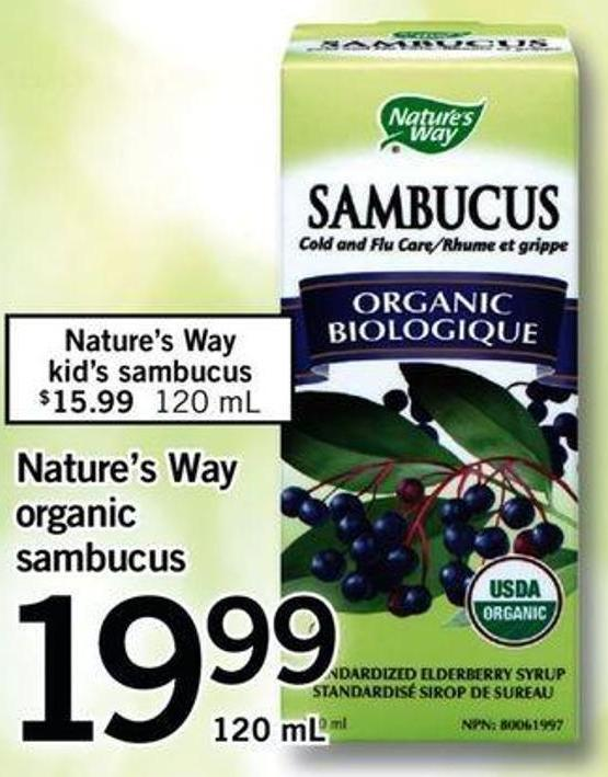 Nature's Way Organic Sambucus - 120 Ml