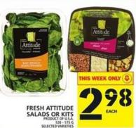 Fresh Attitude Salads Or Kits