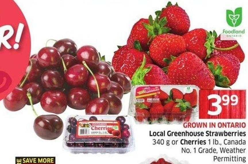 Local Greenhouse Strawberries 340 g or Cherries 1 Lb. - Canada No. 1 Grade - Weather Permitting