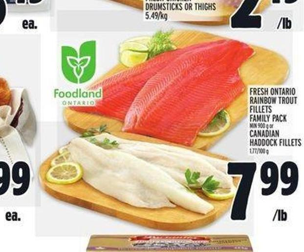 Fresh Ontario Rainbow Trout Fillets Family Pack Min 900 g or Canadian Haddock Fillets 1.77/100 g