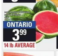 Jumbo Seedless Watermelon - 14 Lb