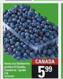 Family Size Blueberries - 2 Lb