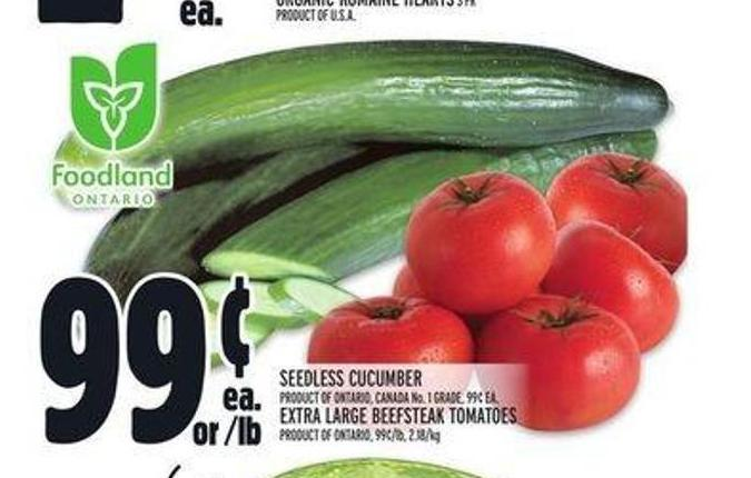 Seedless Cucumber or Extra Large Beefsteak Tomatoes