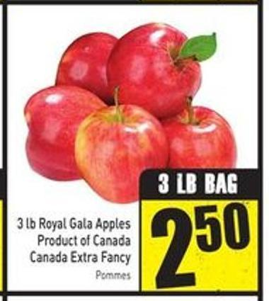 3 Lb Royal Gala Apples Product of Canada Canada Extra Fancy
