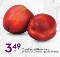 Tree-ripened Nectarines