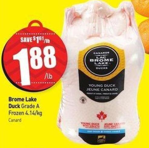 Brome Lake Duck Grade A Frozen 4.14/kg