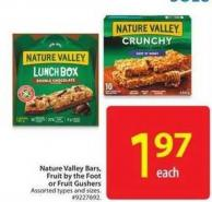 Nature Valley Bars - Fruit By The Foot or Fruit Gushers