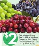 Extra Large Green - Red or Black Seedless Grapes