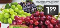 Extra Large Red - Green or Black Seedless or Red Globe Grapes