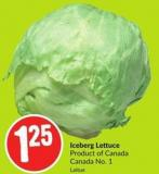 Iceberg Lettuce Product of Canada Canada No. 1