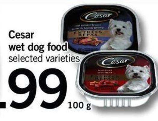 Cesar Wet Dog Food - 100 G
